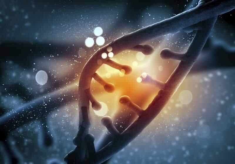 Los Angeles Genetic vs. Genomic Testing
