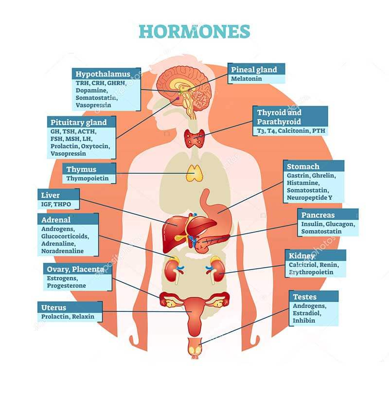 bioidentical hormone replacement therapy los angeles